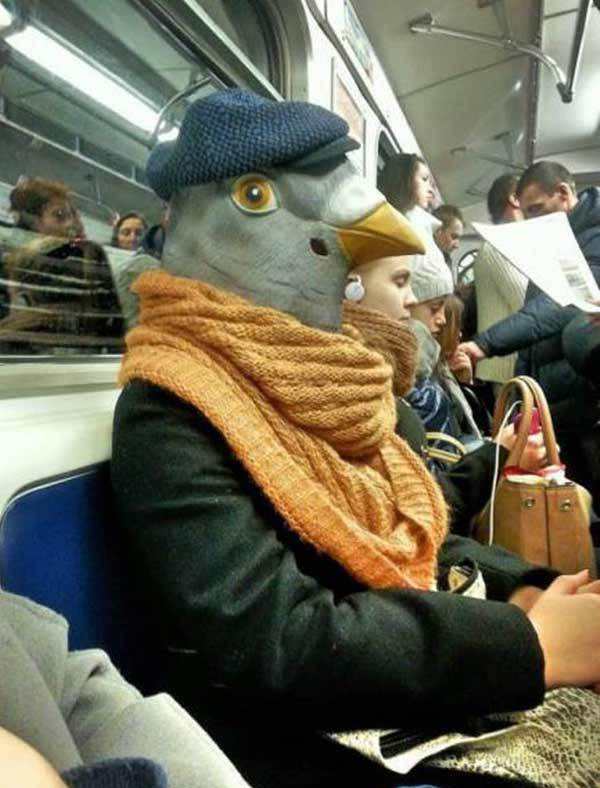 public-transportation-pigeon-mask